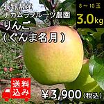 【送料込み】【産地直送!生産者限定!】【W】 長野県産 ナカムラフルーツ農園 りんご (品種:ぐんま名月) 約3.0kg (8~10玉入り) | 着日指定不可 / 沖縄・離島配送不可/今月のおすすめ