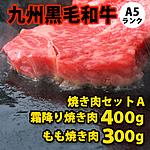 九州黒毛和牛 A5ランク 焼き肉セット 【A】 300g+400g