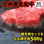 九州黒毛和牛 A5ランク 焼き肉セット 【B】 500g
