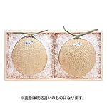 【2019年お中元】 静岡県産 マスクメロン 1玉(約1.2kg) 【W】 | 着日指定不可/沖縄離島不可