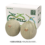 【2019年お中元】 北海道産 夕張メロン 1玉(約1.5kg) 【W】 | 着日指定不可/沖縄離島不可