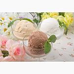 【お取り寄せ】 アイガー 「ガレー」プレミアムアイスクリームセット 1セット