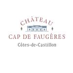 フランス カスティヨン・コート・ド・ボルドー 2019 CH カップ ド フォジェール 750ml | 2019年プリムールワイン