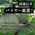 【送料込み】【糖度16度以上!】 茨城県産 アンデスメロン 約2.5kg (3Lサイズ・2玉入り) 【W】 | 着日指定不可 / 沖縄・離島配送不可 / 今月のおすすめ
